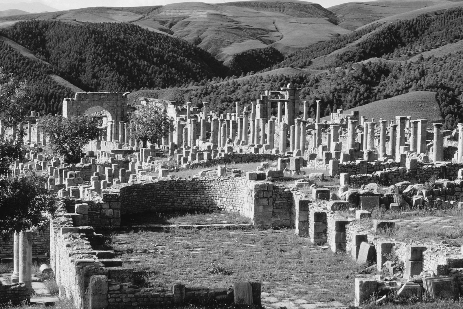El novelista, ensayista, dramaturgo y filósofo francés Albert Camus, nacido en Argelia, escribió dos ensayos sobre Tipasa; Bodas en Tipasa y Retorno a Tipasa. Fundada por los fenicios, el emperador Claudio la convirtió en una colonia y fue una de las ciudades más importantes del Imperio romano en la actual Argelia.